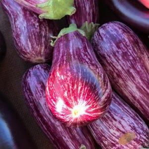 a bunch of eggplants